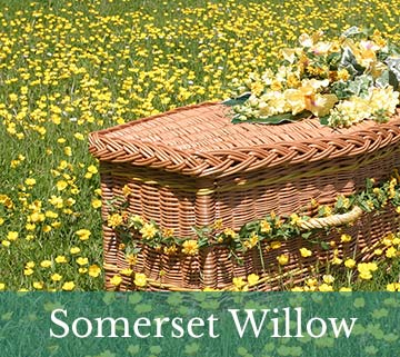 Somerset Willow Company