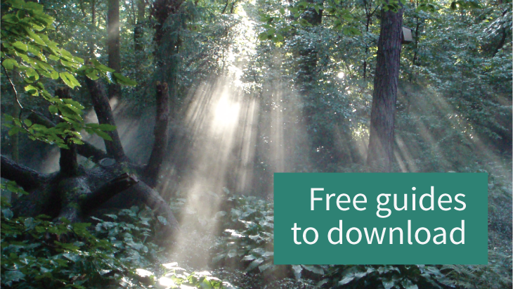 Free funeral planning guides to download